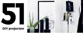 Book : 51 DIY projecten / 51 rå projekter til hjemmet