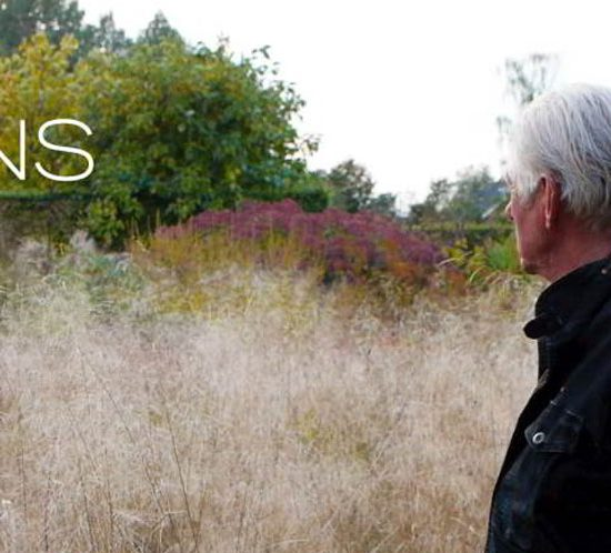 Five-Seasons-The-Gardens-of-Piet-Oudolf