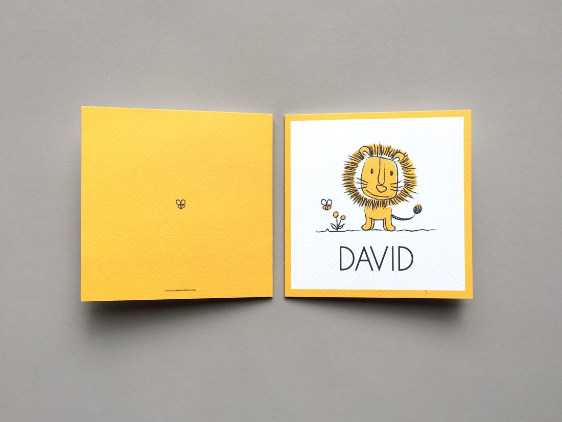 birth-announcement-david