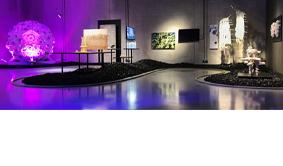 Exhibition : Nature